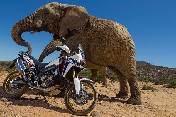 Bike 360